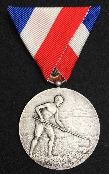 Ordre pour le Mérite Indigène, deuxième type...