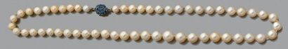 Collier de cinquante-cinq perles de culture en légère chute, le fermoir en or jaune...