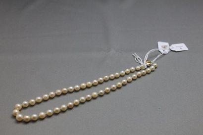 Collier de quarante-sept perles de culture...