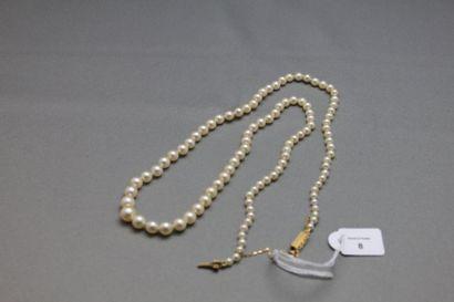 Collier de cent-trois perles de culture en...