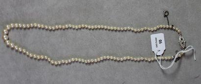 Collier de cent-six perles de culture en...