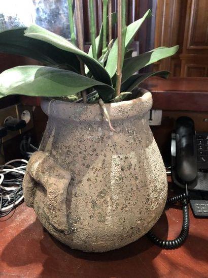 Pot de fleurs en terre cuite façon antique...