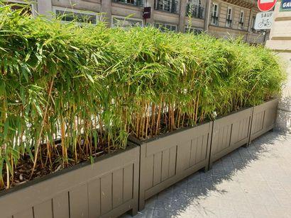 Bacs à plantes en bois peint