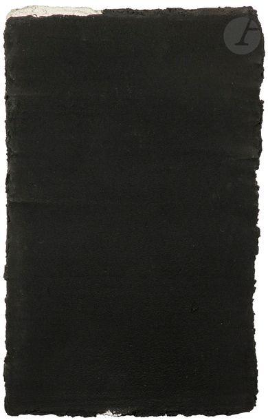 Petite parcelle de noir, 1987 Technique mixte...