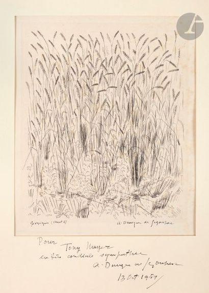 André Dunoyer de Segonzac (1884-1974) Blés...