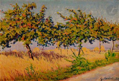 Gustave-Gaston CARIOT (1872-1950) Arbres en bordure de route, 1924 Huile sur carton...