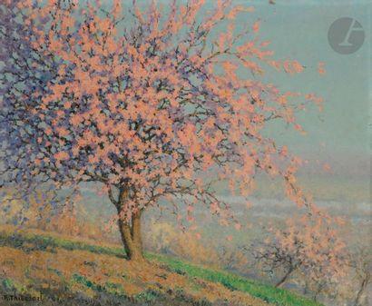 Raymond THIBESART (1874-1963) Arbre en fleurs...