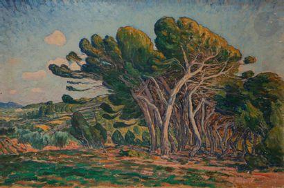 Georges CHENARD HUCHé (1864-1937) Provence,...