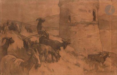 François CORBELLINI (1863-1943) Corse, chèvres et tour génoise, 1920 Fusain. Signé...