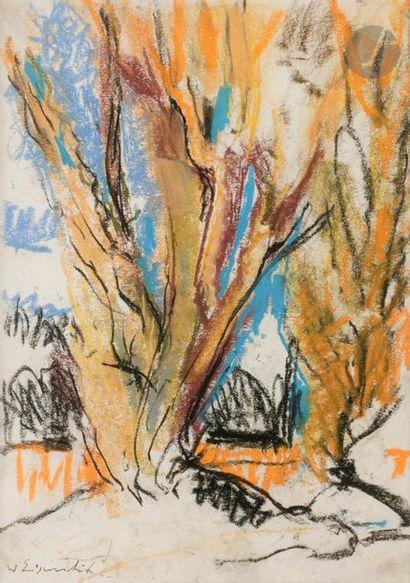 Willy EISENSCHITZ (1889-1974) Paysage Pastel....
