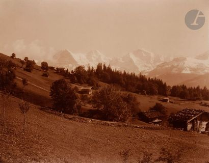 Adolphe Braun (1812-1877) France. Suisse....