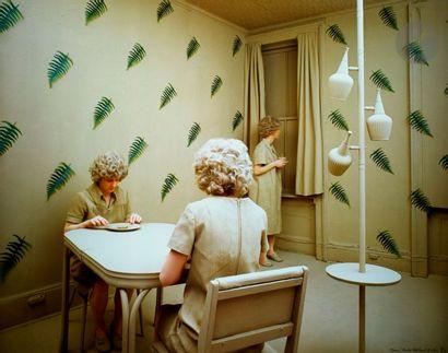 Sandy Skoglund (1946) Ferns, 1980. Cibachrome....