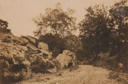 Gustave Le Gray (1820-1884) Fore?t de Fontainebleau, c. 1849-1851. Route du Mont-Girard....