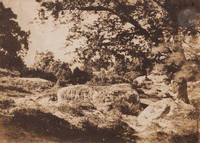 Gustave Le Gray (1820-1884) Fore?t de Fontainebleau, c. 1849-1851. Vue prise sur...