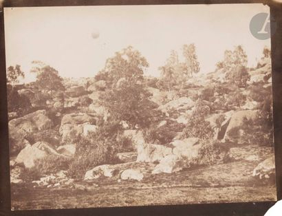 Gustave Le Gray (1820-1884) Fore?t de Fontainebleau, 1849-1851. Épreuve sur papier...