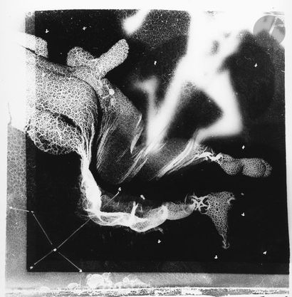 Toums (Thomas Gosset, dit) (1982) Die kunstellation,...