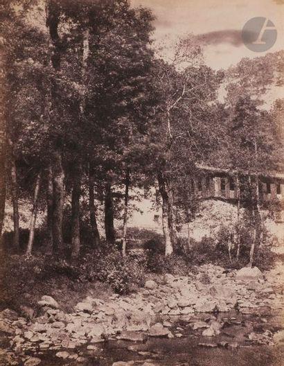 André Giroux (1801-1879) Groupe d'arbres...