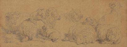 Jean-Baptiste HUET (1745-1811) Études de mouton 3 crayons noirs et lavis gris. 9,5x24,5cm...