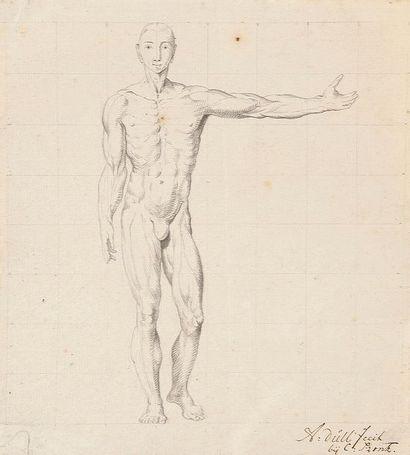A. DÜLL Figures anatomiques 4 dessins, plume...