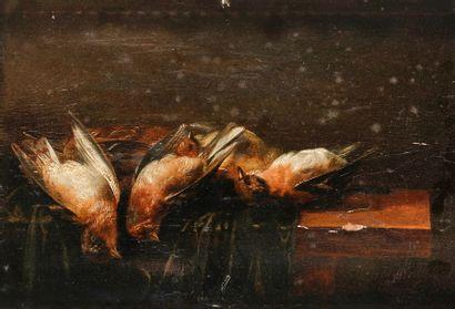 Attribué à Alexander ADRIAENSSEN (1581-1661) Nature morte aux oiseaux Panneau. (Manques...