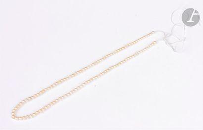 Rang de 116 petites perles peut-être fines rondes et baroques.