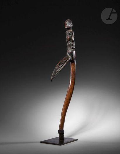 Un ancien bâton de divination à la crosse...