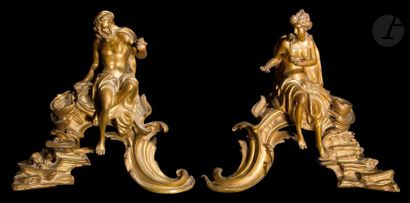 Paire de chenets en bronze doré représentant...
