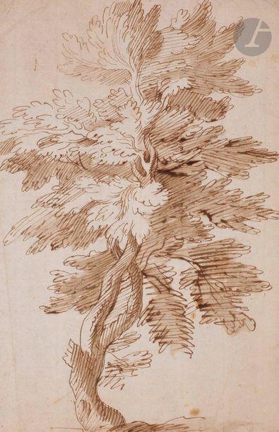 ÉCOLE BOLONAISE du XVIIe siècle  Étude d'arbre...