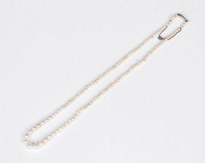 Collier de perles de culture en chute. Poids...
