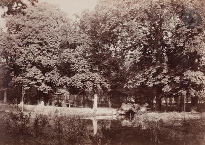 Charles Marville (1813 - 1879) Bois de Boulogne,...