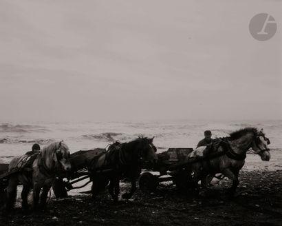 *Chris Killip (1946-2020) Horses. Seacoal...