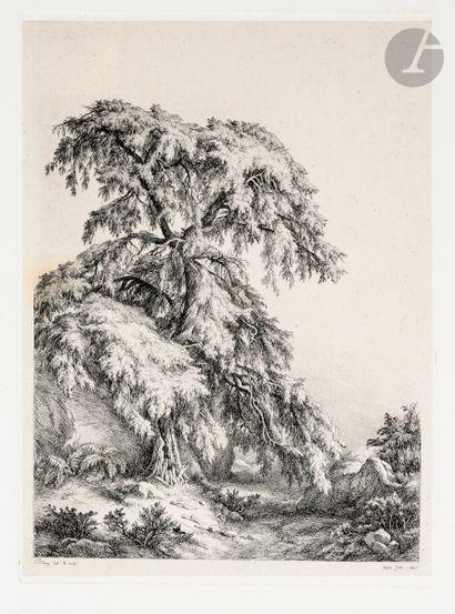 Eugène Bléry (1805-1886) Le Genévrier. 1840....