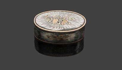 Boîte ovale en argent partiellement doré...