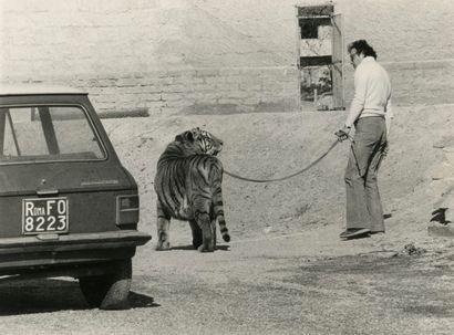 Photographe de presse Rome, novembre 1980....