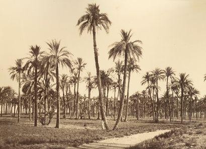 Émile Béchard (1844-?) Égypte, c. 1870. La...