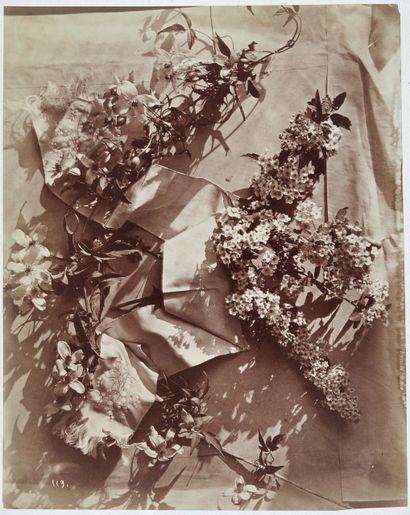 Photographe non identifié Fleurs et rubans, c. 1870. Épreuve sur papier albuminé,...