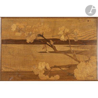 ÉTABLISSEMENTS GALLÉ (1904-1936) Paysages maritimes et lacustres arborés Suite de...