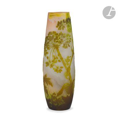 ÉTABLISSEMENTS GALLÉ (1904-1936) Berce du Caucase Important vase obus. Épreuve en...