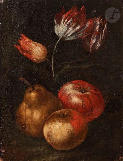 École ITALIENNE du XVIIe siècle Tulipes,...