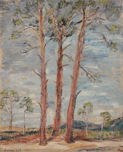 Sabine HETTNER (1906-1986) Trois arbres,...