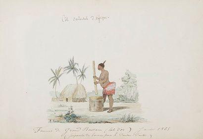colonies. Album de dessins, photographies...