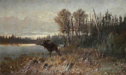 John FERY [autrichien-américain] (1859-1934)