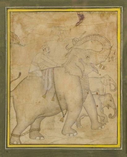 Cornak à dos d'éléphant et ses petits, Rajasthan,...