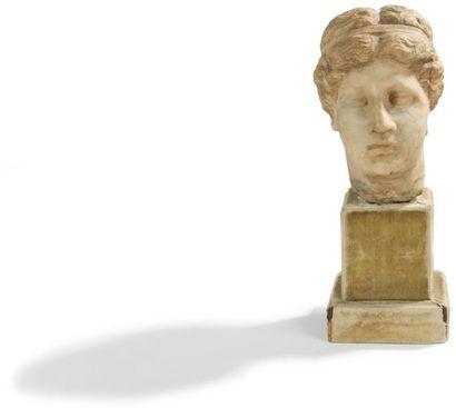 Tête de Vénus, les cheveux ceints d'un bandeau....