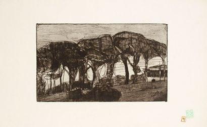 Armand Seguin (1869-1954)
