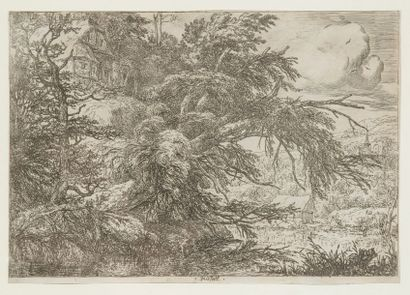Jacob Isaakszoon VAN RUISDAEL (1628-1682) (d'après)