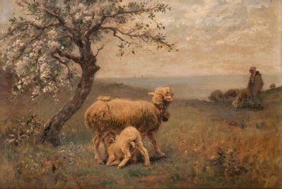 Paul VAYSON<BR>(Gordes 1842 - Paris 1911)