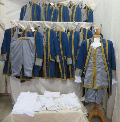 Onze livrées bleues et grises à parements...