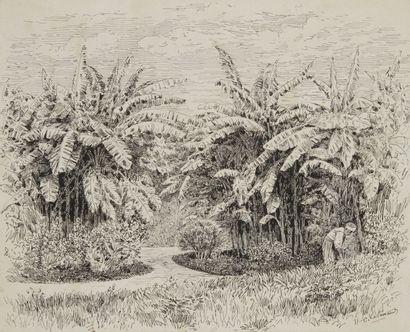 Charles LALLEMAND (1826 - 1904) Paysage de Tunisie (Terourba) 5 dessins à l'encre...