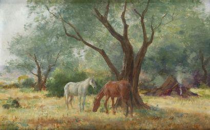 John - Lewis SHONBORN (1852 - 1931)